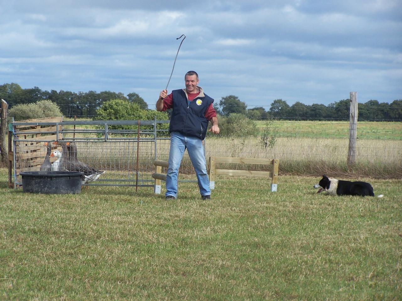 concours oies 9 octobre 2011 017