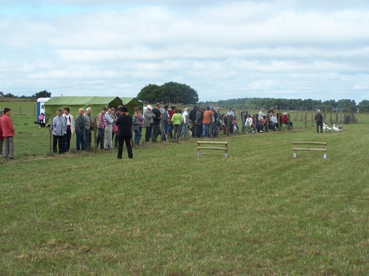 concours oies 9 octobre 2011 019